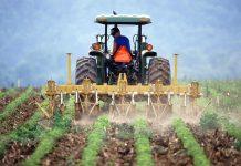 alles over de boerenprotesten